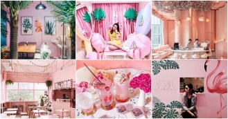 pink shops cafes in bangkok thailand cintage school matchbox stylenanda pinkplanter house of eden seoulcial club