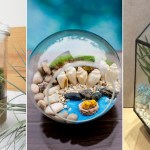 9 Places To Buy Cheap Terrariums In Singapore From Just 14 80