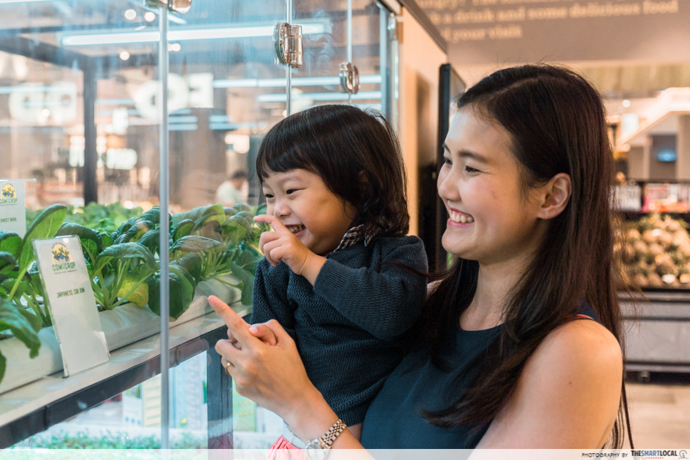FairPrice Xtra and Unity VivoCity - hydroponics farm