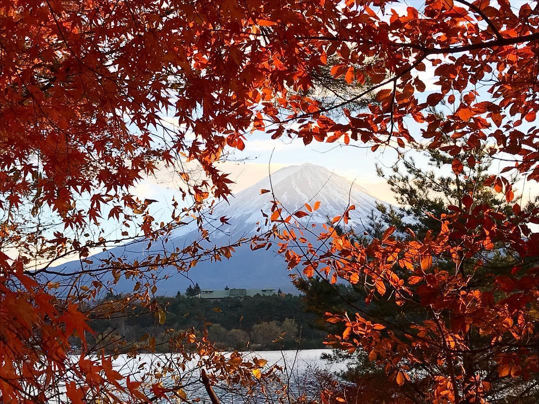 Autumn Japan 2019 mount fuji