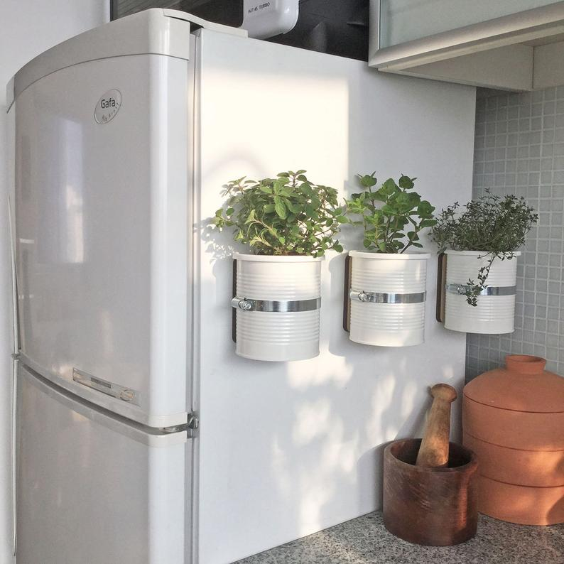 herbs and plants on a fridge