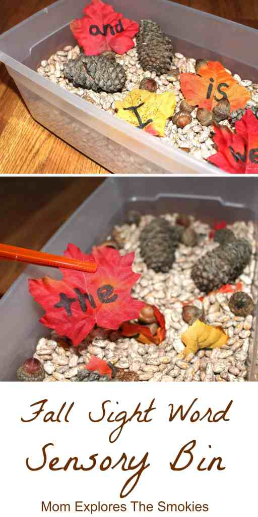 Fall Sight Word Sensory Bin, Mom Explores The Smokies