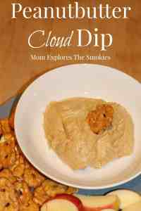 Peanut Butter Cloud Dip, Mom Explores The Smokies