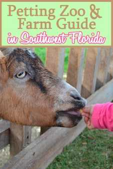 Southwest Florida Petting Zoo and Farm Guide