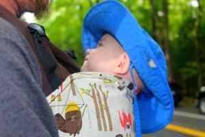 id Friendly Smokies, Schoolhouse Gap Trail, Mom Explores The Smokies