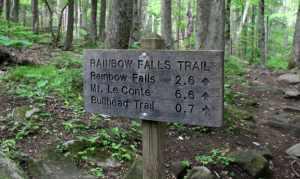 Kid Friendly Smokies, Rainbow Falls, Mom Explores The Smokies 2