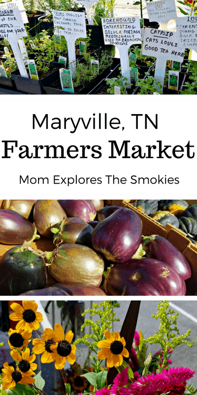 Maryville Farmers Market, Mom Explores The Smokies