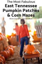 Corn Mazes & Pumpkin Patches in Knoxville and East Tennessee