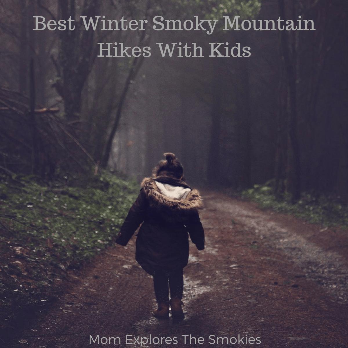 Best Winter Smoky Mountain Hikes With Kids, Mom Explores The Smokies