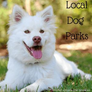 Knoxville and Smoky Mountain Dog Parks, Mom Explores The Smokies