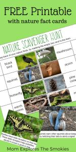Free Printable Nature Scavenger Hunt, Mom Explores The Smokies