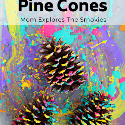 Pine Cone Craft: Splatter Painting