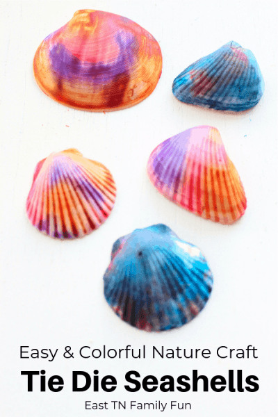 Gorgeous Tie Dye Seashell Craft