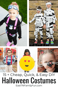 15 + Halloween Costumes Cheap and Easy