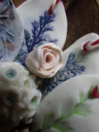 Rose detail