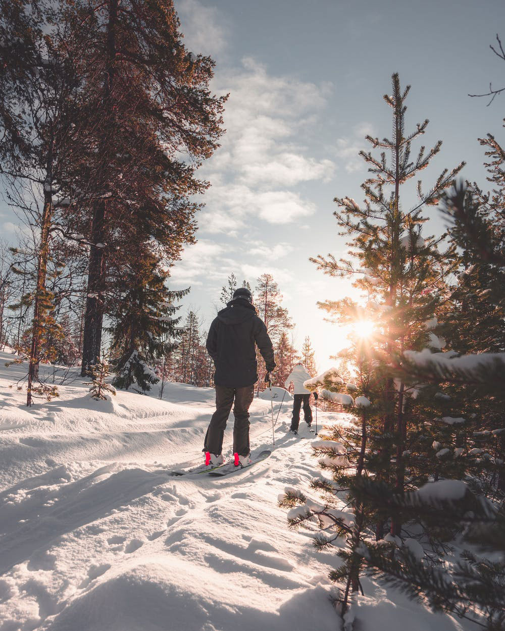 Skiing   Snow Goose B&B, Adirondacks, NY