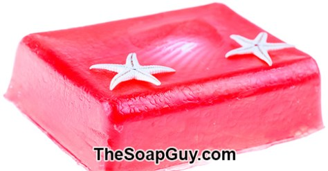 glycerine-soap-with-shells_MkTmAUdd_color