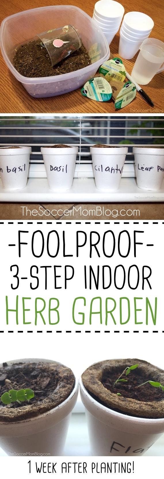 Gardening with kids easy 3 step indoor herb garden the for Indoor gardening lesson