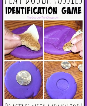 Play Dough Fossils Identification Game