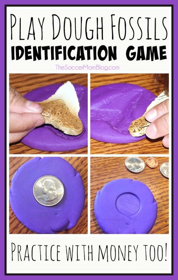 Challenge your child's critical thinking and observation skills with this play dough fossils identification game! We also practiced identifying coins.