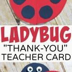 Ladybug Teacher Thank You Card