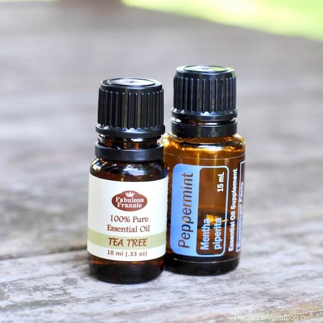Tea tree oil and peppermint oil bottles