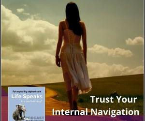 Life Speaks 003: Trust Your Internal Navigation