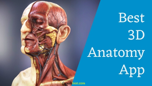 Best 3d Anatomy App