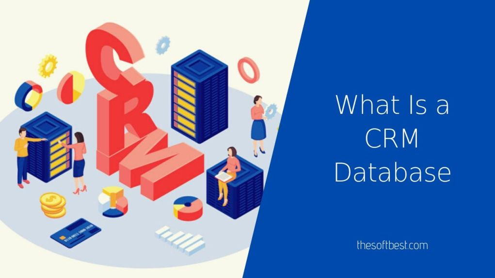 What Is a CRM Database