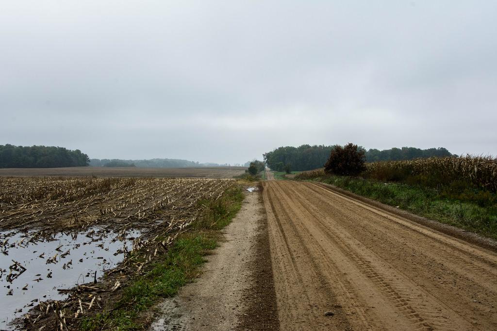 dirt_road_corn_mud