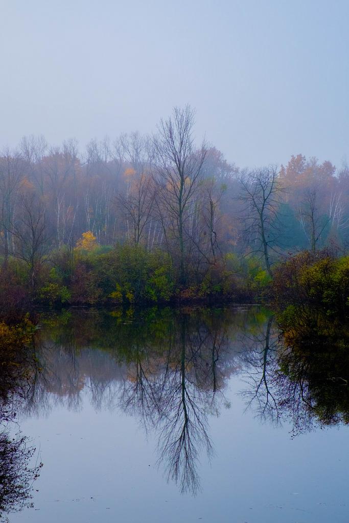 deerfield-park-mp-fog