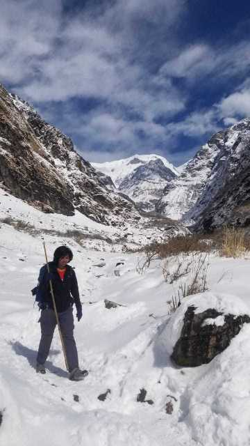 A girl with a bamboo stick against snow clad Himalayan mountains