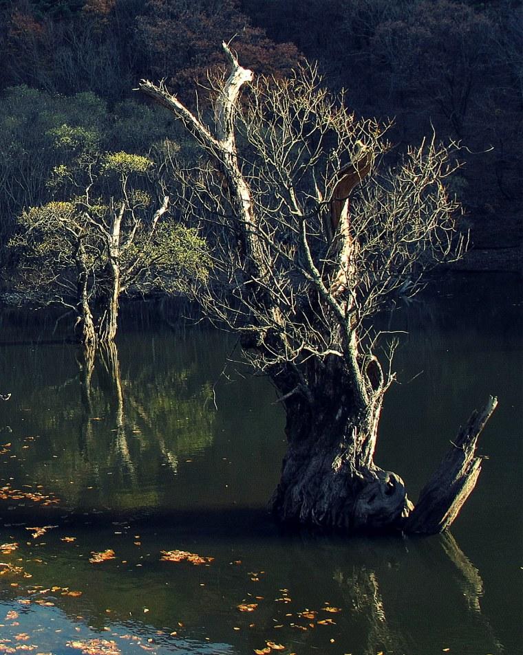 Jusanji Reservoir