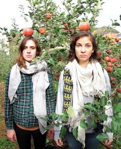 Cheongsong Apple Picking