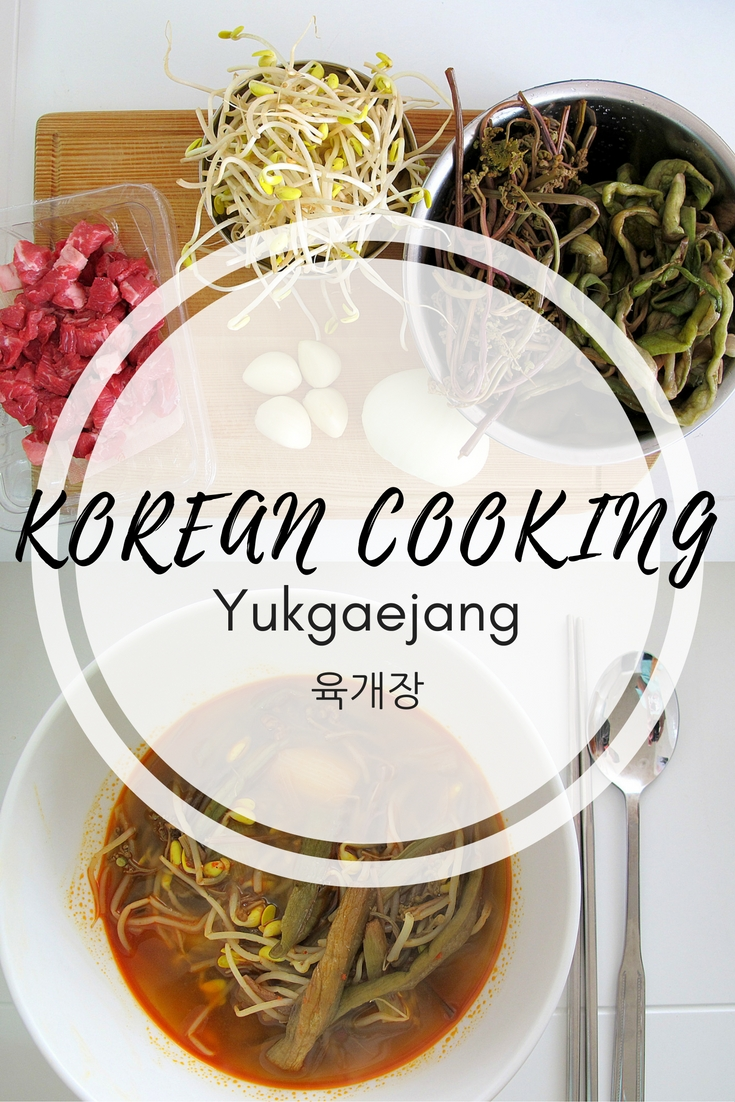 Korean Cooking, Yukgaejang Stew.. Yukgaejang is a Korean beef and veggie stew that is a classic for dinner in most Korean households. Follow this easy to understand recipe to make your own.