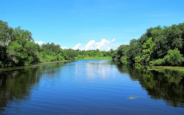 New Orleans, Louisiana: Swamp Tour