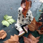 baby in the autumn