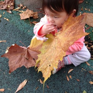 baby with a gigantic leaf
