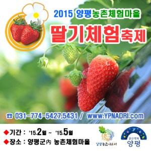 Yangpyeong Strawberry Festival
