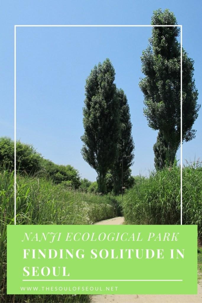 Nanji Ecological Park: Finding Solitude in Seoul