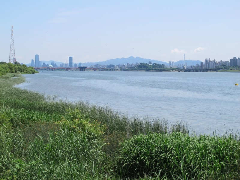 Nanji Ecological Park, Nanji, Mapo-gu, Seoul, Korea