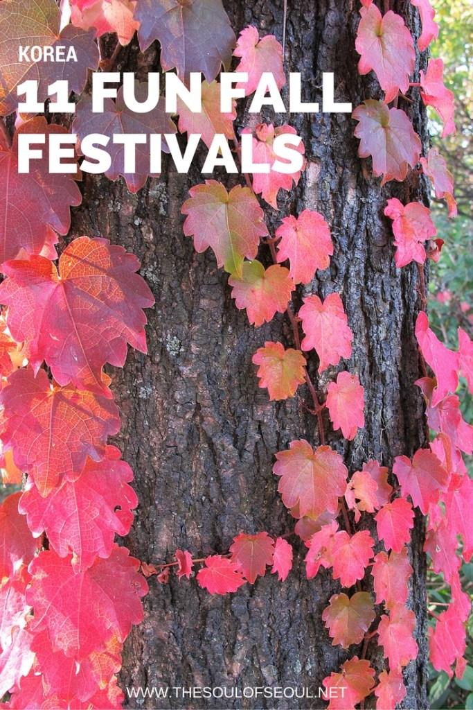 11 Fun Fall Festivals in Korea