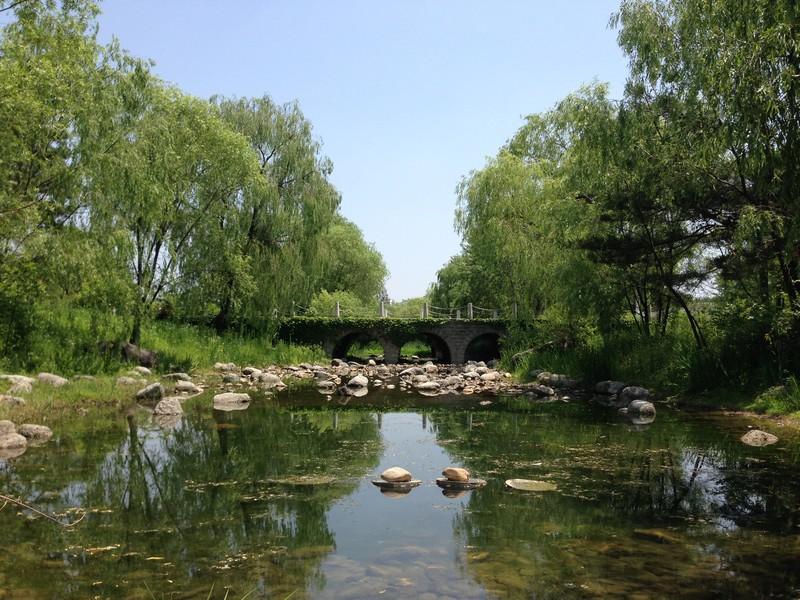 Pyeongwha (Peace) Park, World Cup Park, Seoul, Korea: Stream & Bridge