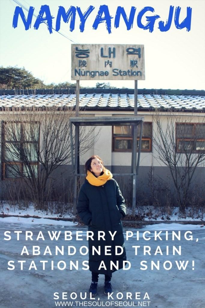 Namyangju: Strawberry Picking, Abandoned Train Stations & Snow!