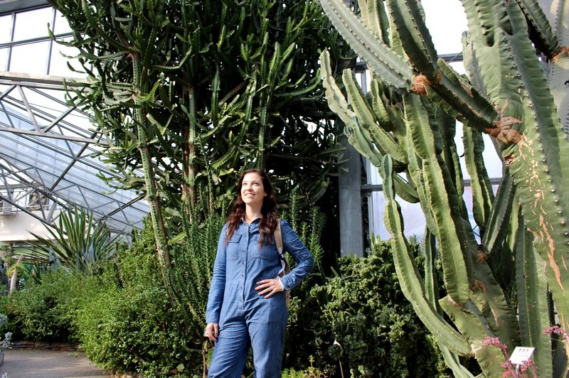 Cactus Greenhouse, Ilsan, Korea: Hallie Bradley