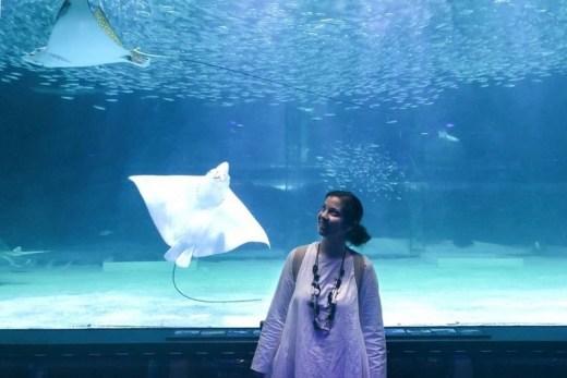 COEX Aquarium, Seoul, Korea