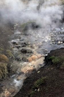 Steam Eruptions © Jessica Gatfield