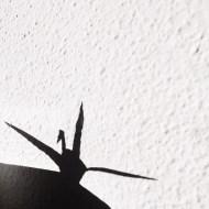 Día 38 - Sin palabras, sin cuerpo pero siempre con mi sombra
