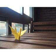 Día 172 - Amarillo y madera