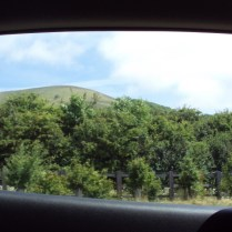 A view from the car window